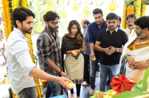 Maruthi-Naga Chaitanya Movie Launch