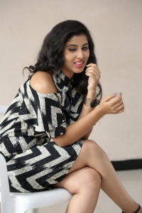 Pavani Pictures